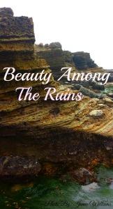 beauty among